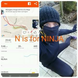 N is for Ninja