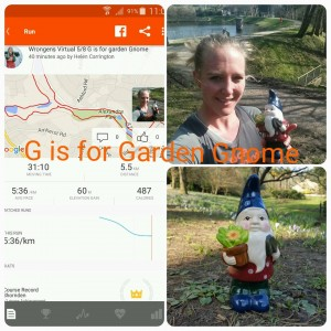G is for Garden Gnome